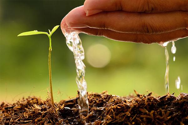 reilaender-grundwasser-themen-grundwassererkundung